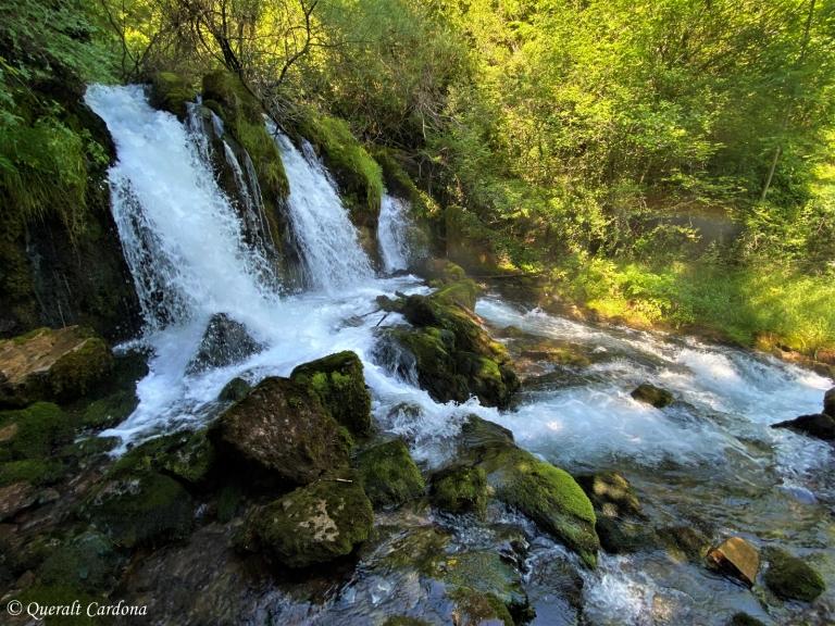 Fonts del Bastareny